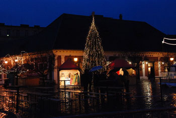 the Christmas tree on the Main Square of Óbuda by night