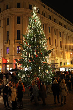 Christmas tree on Vorosmarty sqr at night