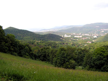 green slopes at Normafa in the Buda Hills