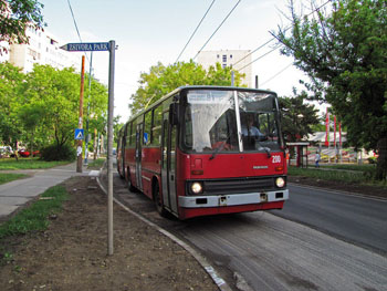 a red Trolley Bus