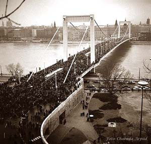 Elizabeth Bridge on its opening in 1903