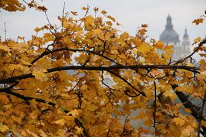 Budapest Autumn City Scape