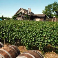 part of a vineyard with a couple of wooden barrels and a cellar in the background