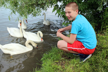 our 12 yr boy feeding the swans in the Danube
