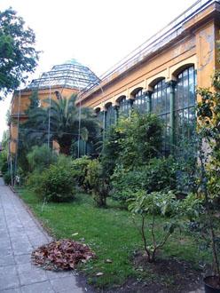 Fűvészkert Botanical garden in Budapest