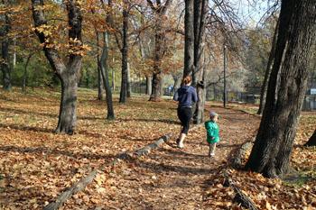 A jogger in Orczy Garden in autumn