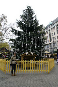 a tall fir with white ornaments, a young lady standing in front of it for photo