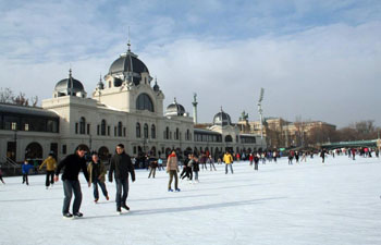 Ice Skaters on the rink at City Park