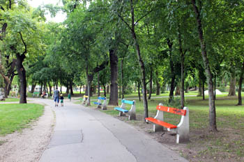 benches along a walkway in the aprk