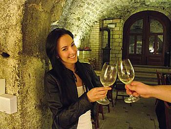 inside a cellar on a Wine Tour in Etyek