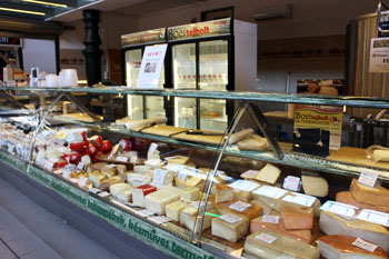 lots of cheeses in the counter