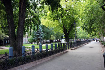 a walkway and trees in the park